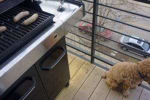 how to cook bratwurst grill
